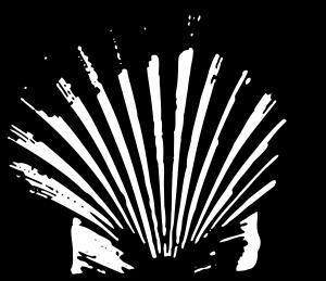 Shell_1909